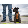 Harnais dog copenhagen Comfort Walk Air™ Harness